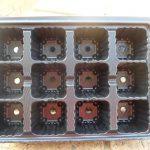 12 Cavity Seedling Tray